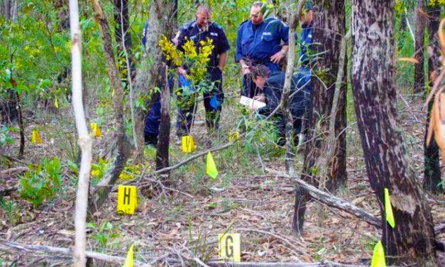 Bűncselekmény áldozata a debreceni Nagyerdőben holtan talált nő