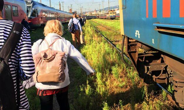 Otthagyta az utasokat a MÁV a nyílt pályán