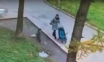 A csatornafedélre lépő gyereket elnyeli a föld – Budapesten is történt ilyen! (Videó)
