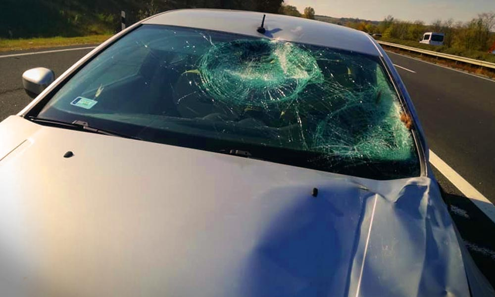 Két jármű is elütött el lovat, az állat elpusztult