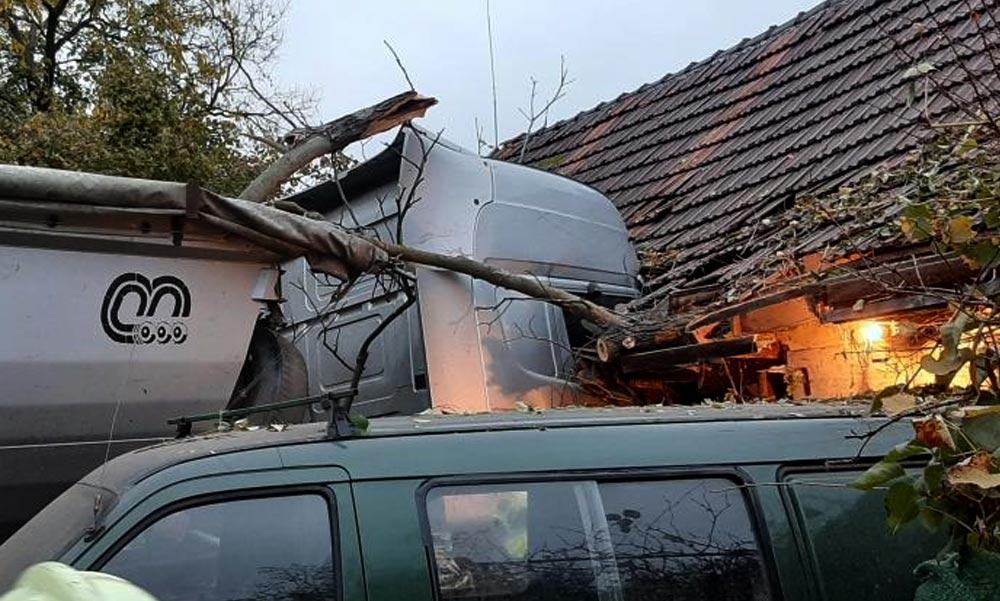 Brutális vendég érkezett, majdnem összeomlott a ház