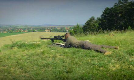 Will Smith egy Budapest melletti fenyvesben lövöldözik legújabb filmjében