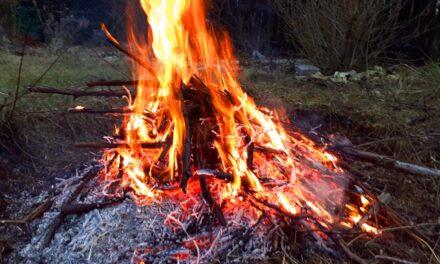 Súlyos betegséget okozhat az avarégetés, van ahol már betiltották