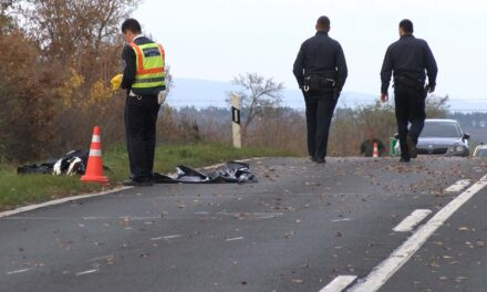 Halálos motorbaleset: szarvassal ütközött egy házaspár, az állat lerúgta az utasokat a járműről