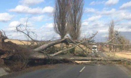Ítéletidő: már Dunántúlon pusztít a vihar