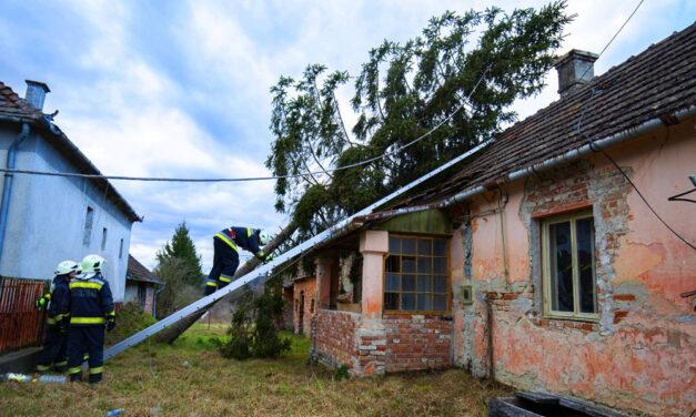 Vihar: tetőket bontott meg, fákat döntött ki és kéményeket rongált meg a szél