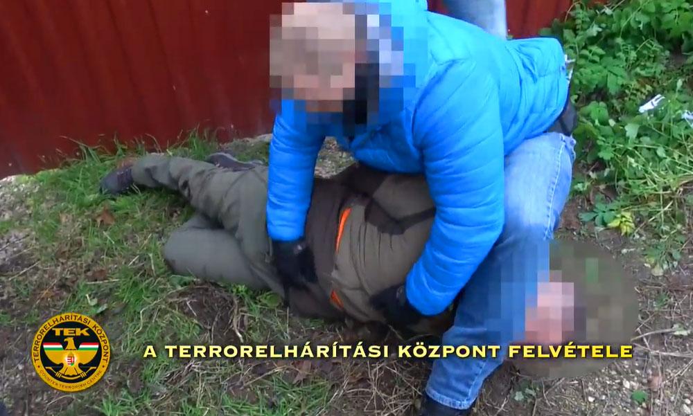 Óriási drogfogás: Hatalmas kannabisz ültetvényt lepleztek le, fegyver is volt a termesztőnél