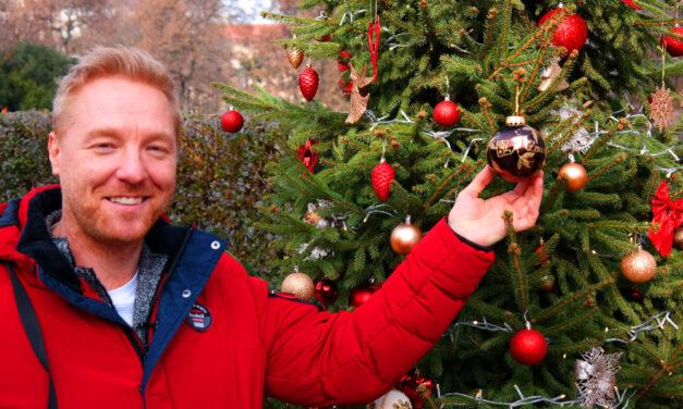 Igazi sztárok díszítettek karácsonyfát a Városmajorban, nagy meglepetéssel készülnek