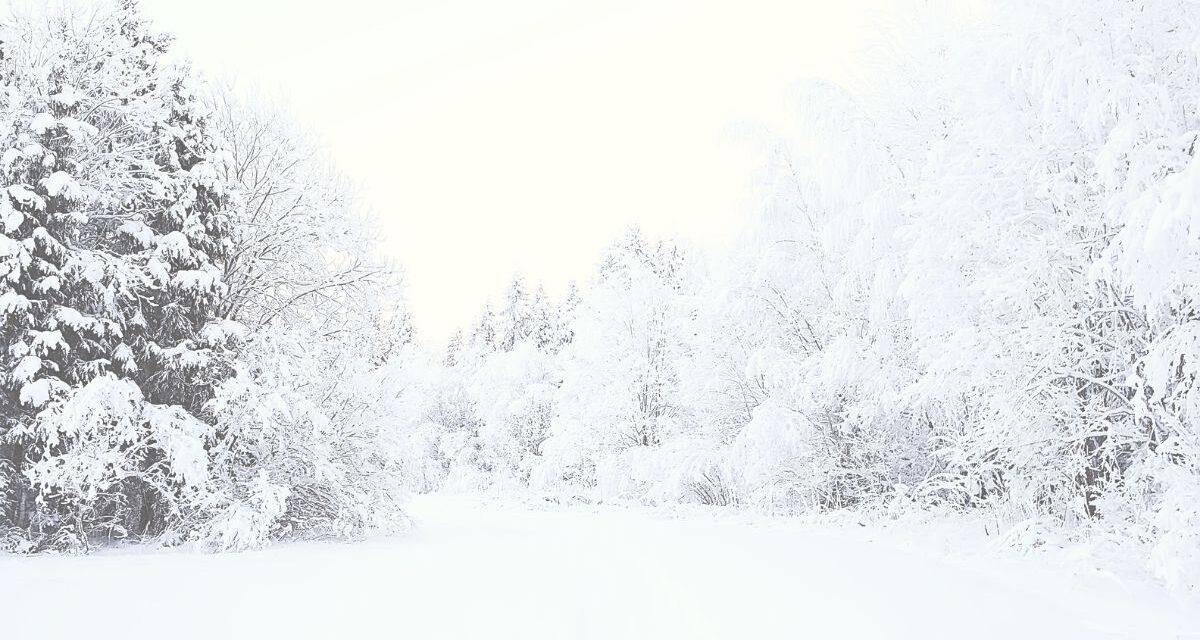 Havazás, viharos szél, fagyos levegő – Beboríthatja az országot a hó, ezekre a megyékre adott ki riasztást az OMSZ