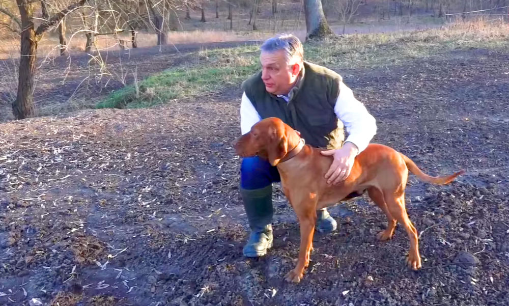 Orbán Viktor kutyával