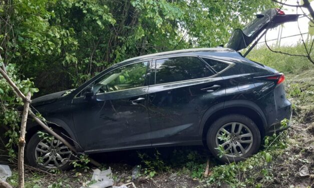 Vezetés közben lett rosszul az egyik nagykövetség dolgozója, a tűzoltóknak a fákat is ki kellett vágniuk, hogy hozzáférjenek a sérülthöz a Lexusban