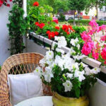 Figyeld meg a nap járását és neked is parádésan szép erkélyed lehet